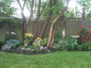 """My """"main"""" garden during IVF #3"""